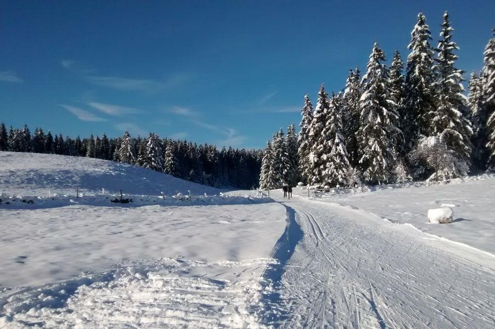 Stage ski de fond à Prémanon