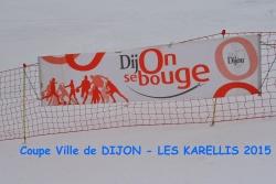 Coupe de la ville de Dijon 03/2015