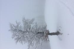 Samedis neige à Métabief 13 et 27 janvier